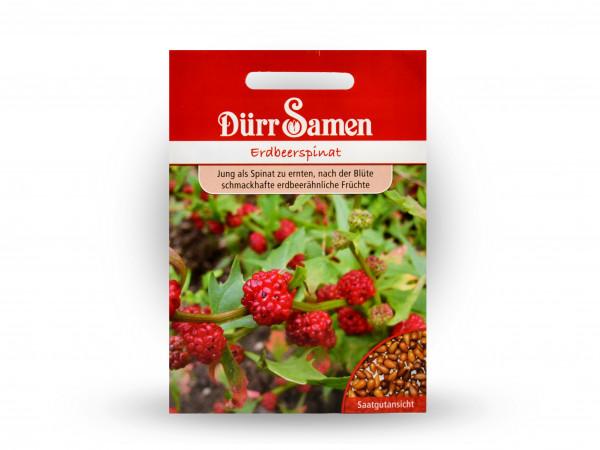 Dürr Samen - Erdbeerspinat