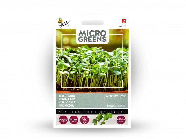 Buzzy Microgreens Grünkohl
