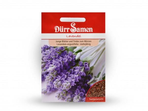 Dürr Samen Lavendel Lavandula angustifolia
