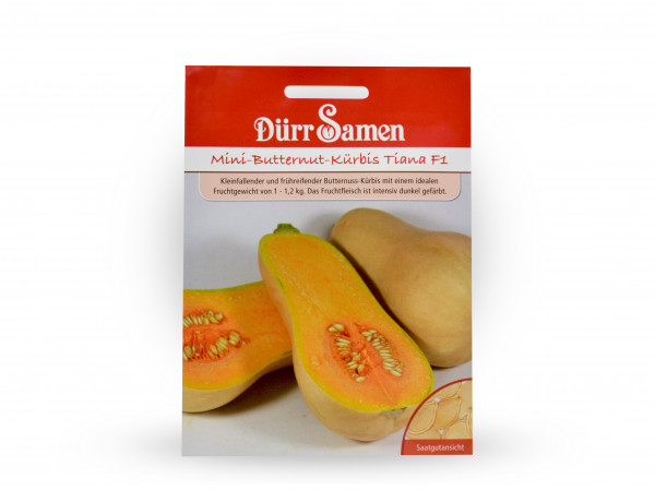 Dürr Samen - Mini-Butternut-Kürbis Tiana