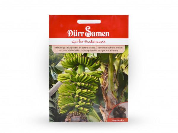 Dürr Samen - Große Essbanane