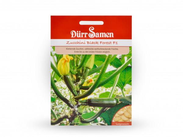 Dürr Samen - Zucchini Black Forest