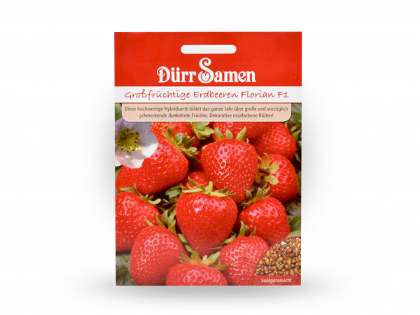 Dürr Samen - Großfrüchtige Erdbeeren Florian
