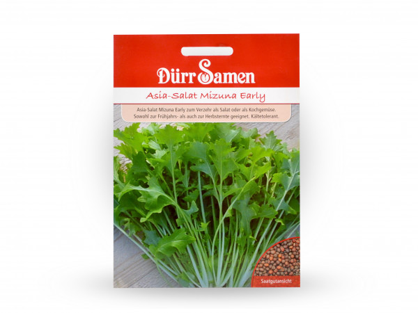 Dürr Samen - Asia-Salat Mizuna Early